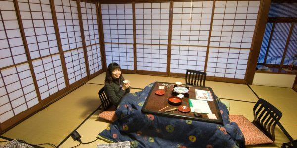 kotatsu (1)