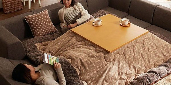 kotatsu (2)